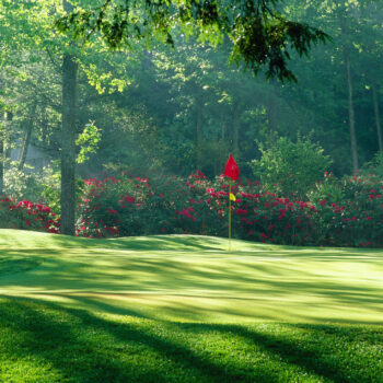 elk river club golf course, red flag in middle of green